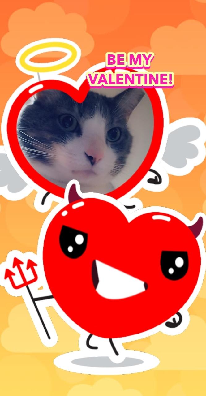 ValentineHuck.jpg